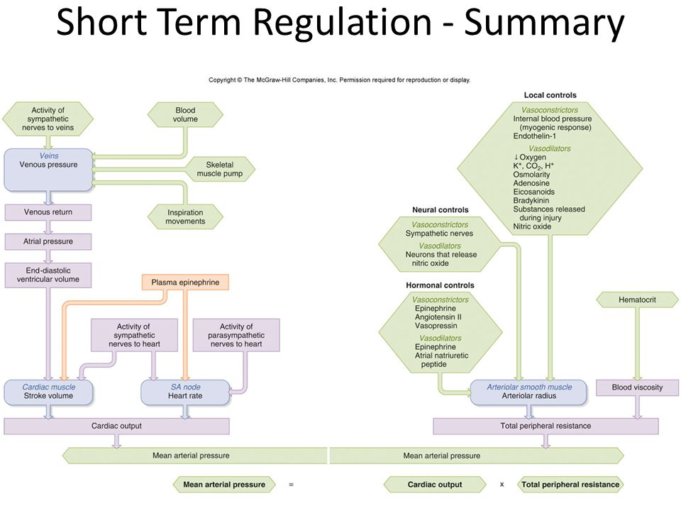 Short Term Regulation - Summary