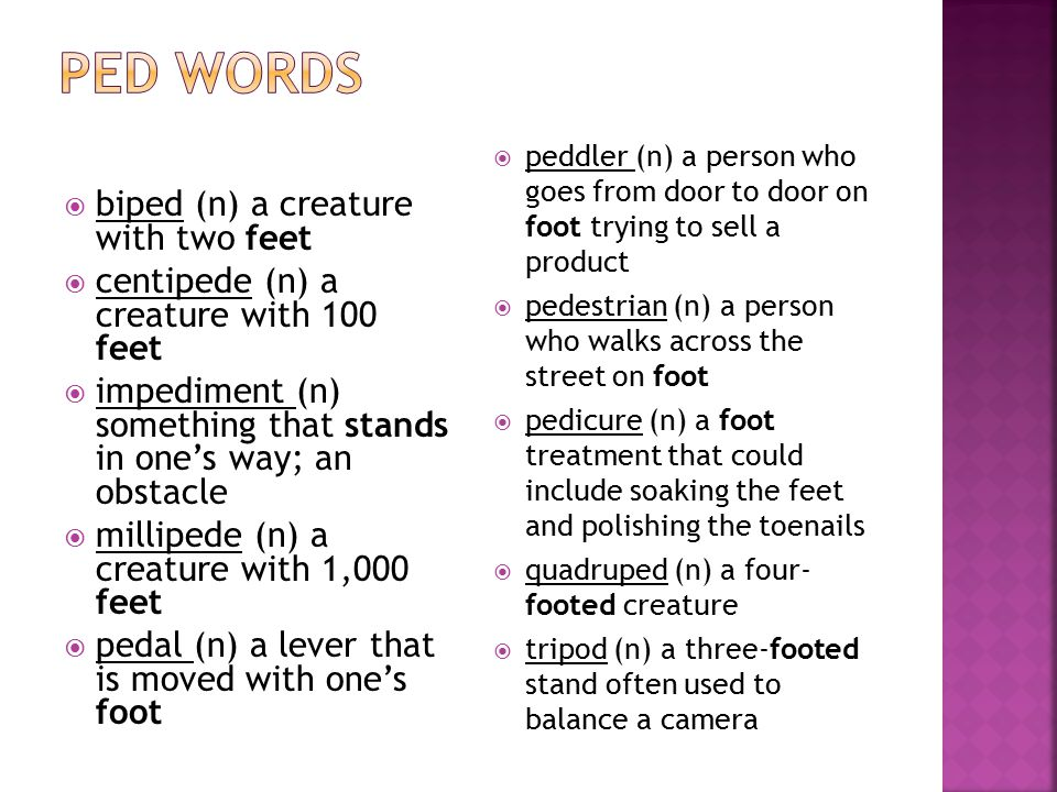 Ped words biped (n) a creature with two feet