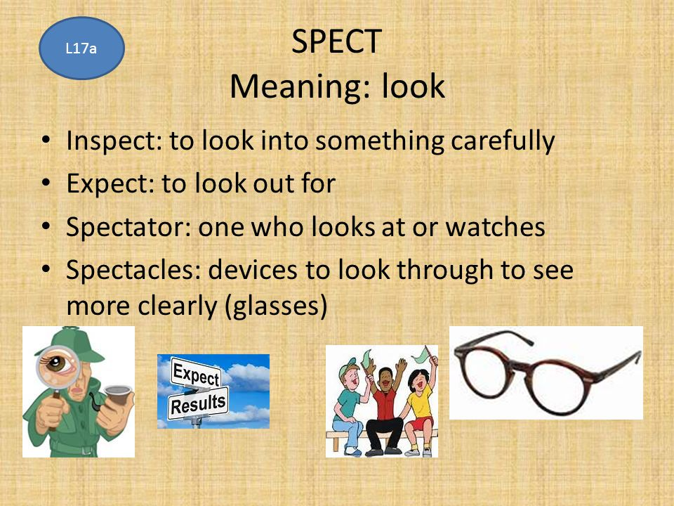 SPECT Meaning: look Inspect: to look into something carefully
