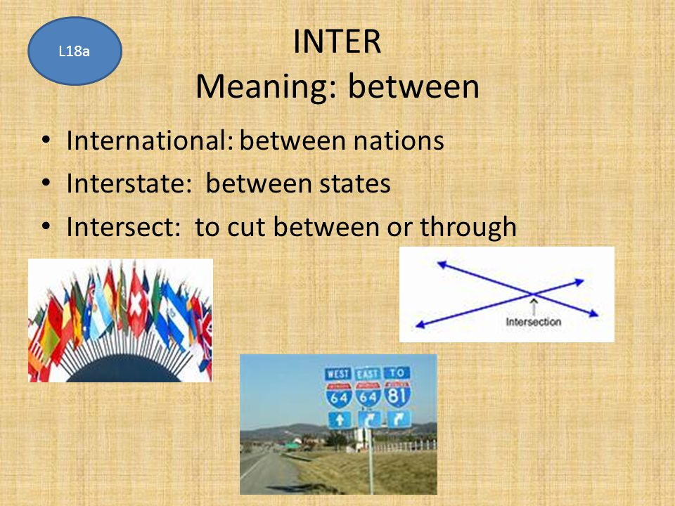 INTER Meaning: between