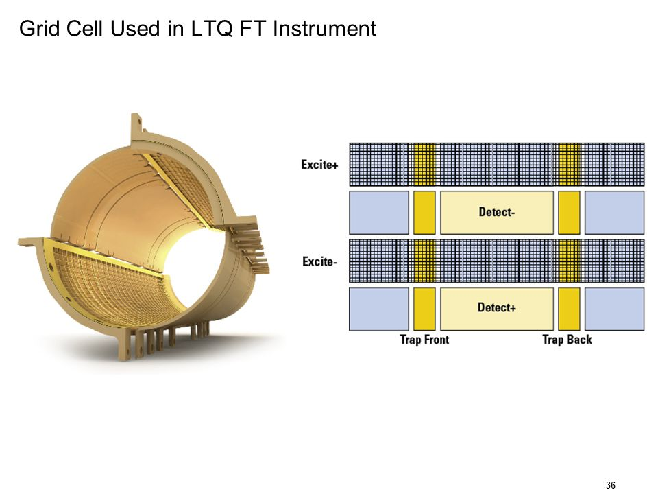 Grid Cell Used in LTQ FT Instrument