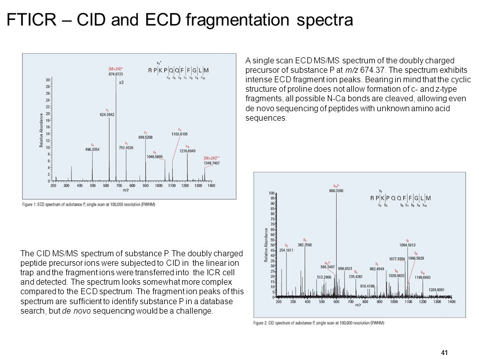 FTICR – CID and ECD fragmentation spectra