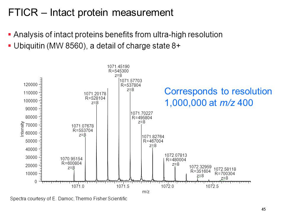 FTICR – Intact protein measurement