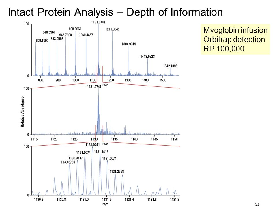 Intact Protein Analysis – Depth of Information