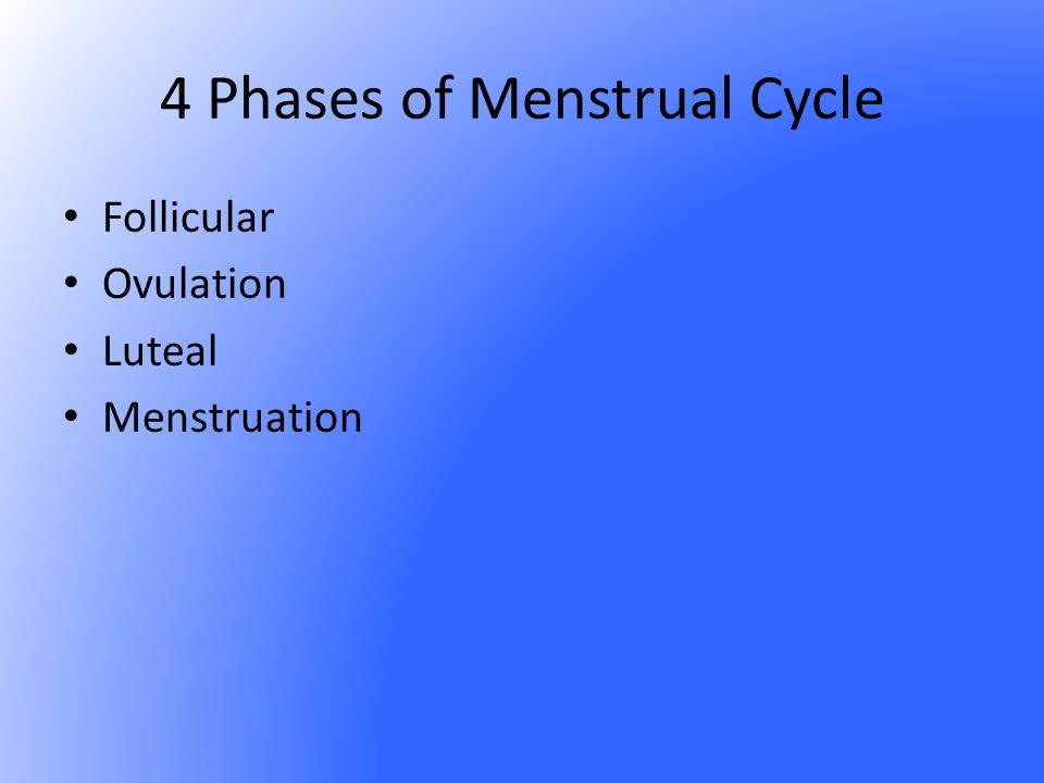 4 Phases of Menstrual Cycle
