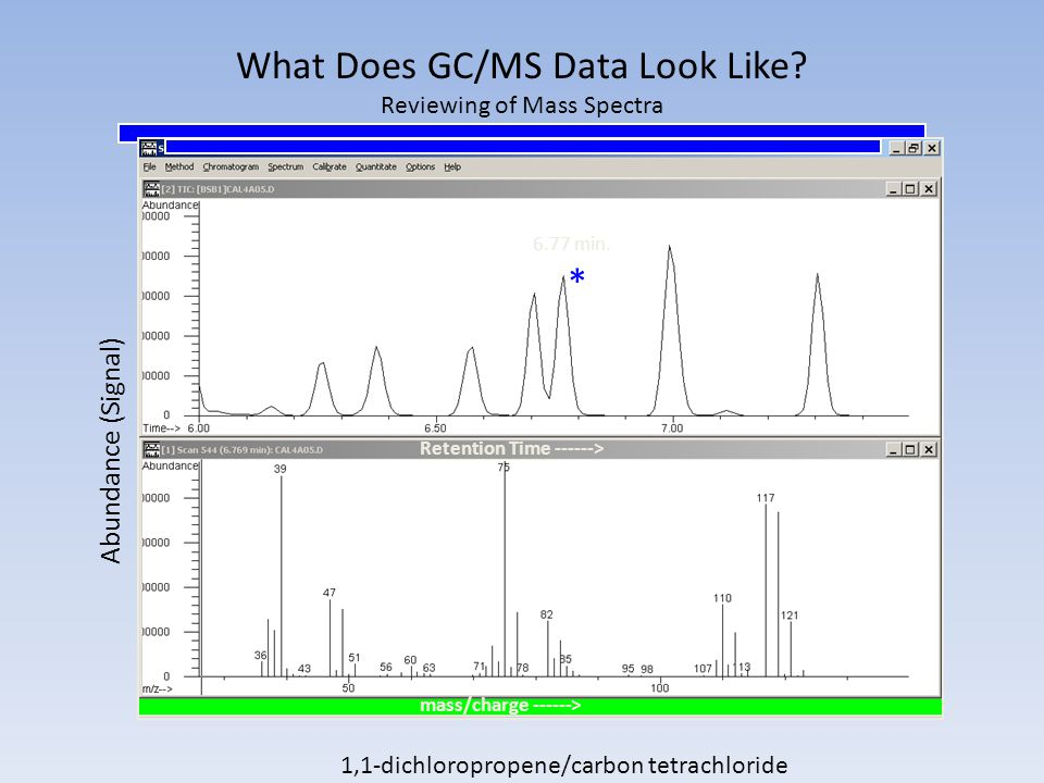 What Does GC/MS Data Look Like Reviewing of Mass Spectra