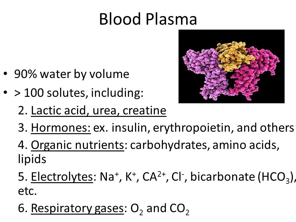 Blood Plasma 90% water by volume > 100 solutes, including: