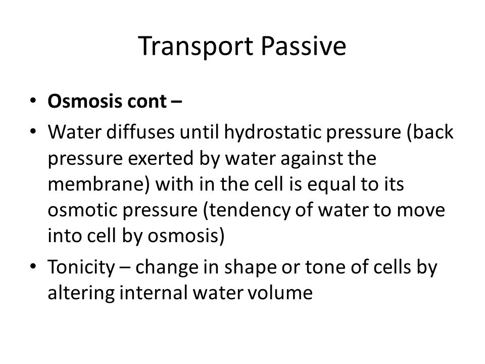 Transport Passive Osmosis cont –