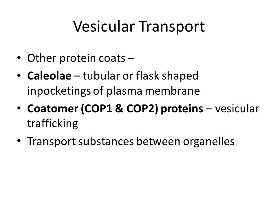 Vesicular Transport Other protein coats –