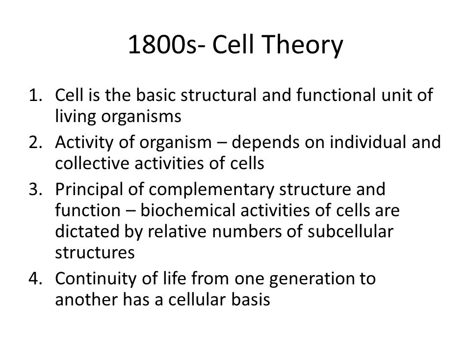1800s- Cell Theory Cell is the basic structural and functional unit of living organisms.