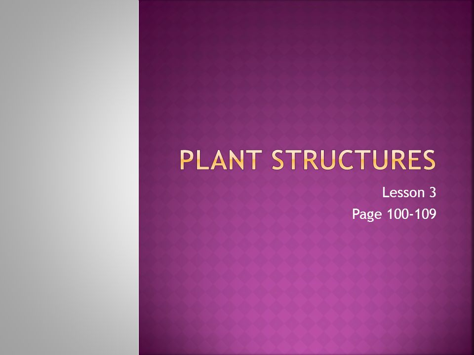 Plant Structures Lesson 3 Page 100-109