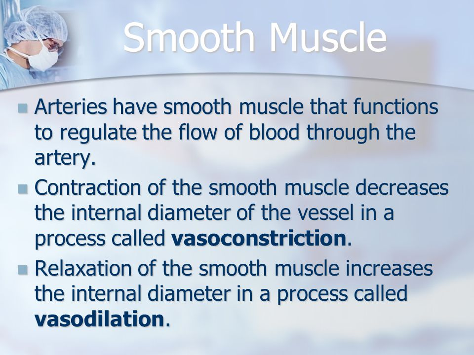 Smooth Muscle Arteries have smooth muscle that functions to regulate the flow of blood through the artery.