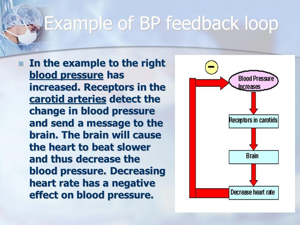 Example of BP feedback loop