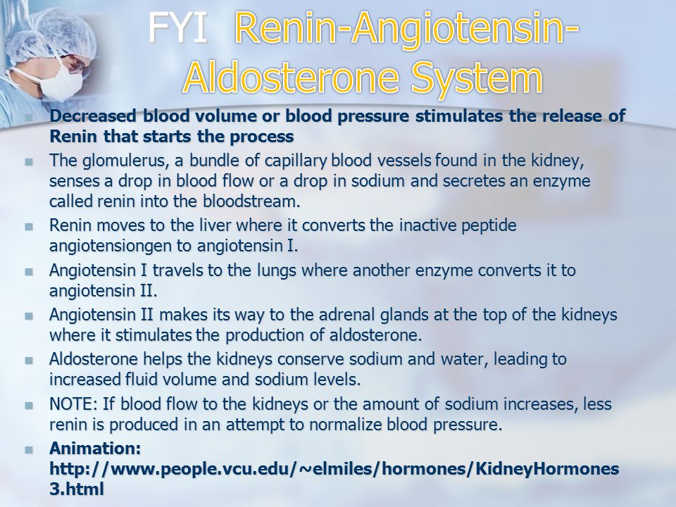 FYI Renin-Angiotensin-Aldosterone System