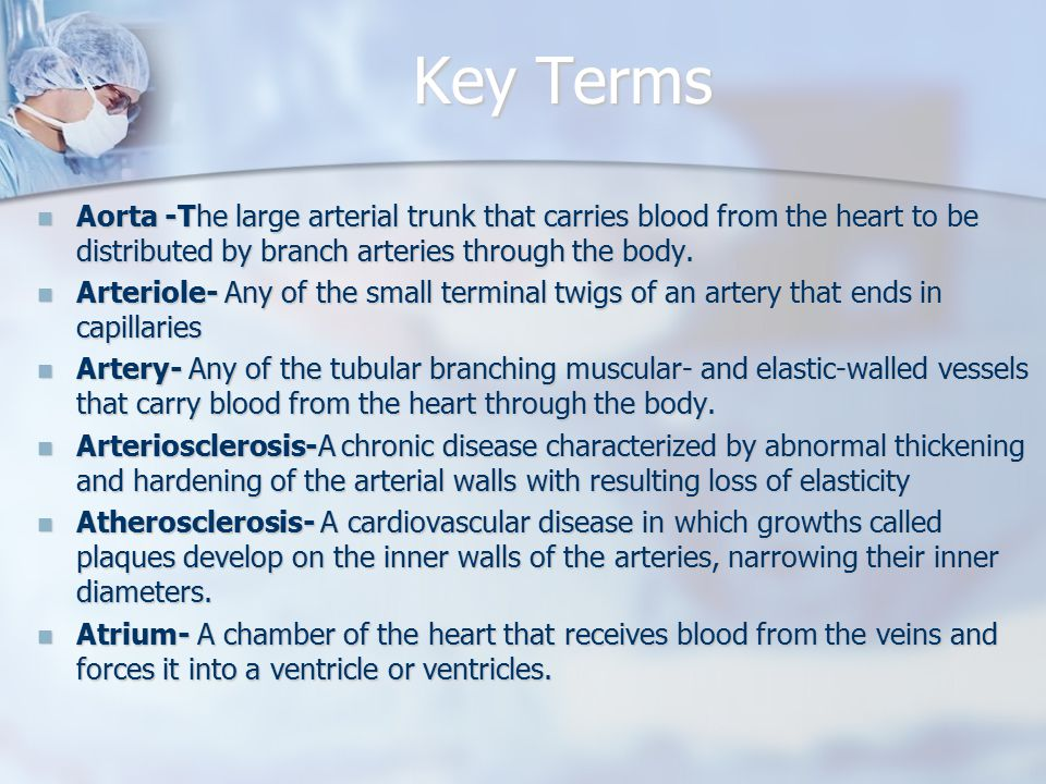 Key Terms Aorta -The large arterial trunk that carries blood from the heart to be distributed by branch arteries through the body.