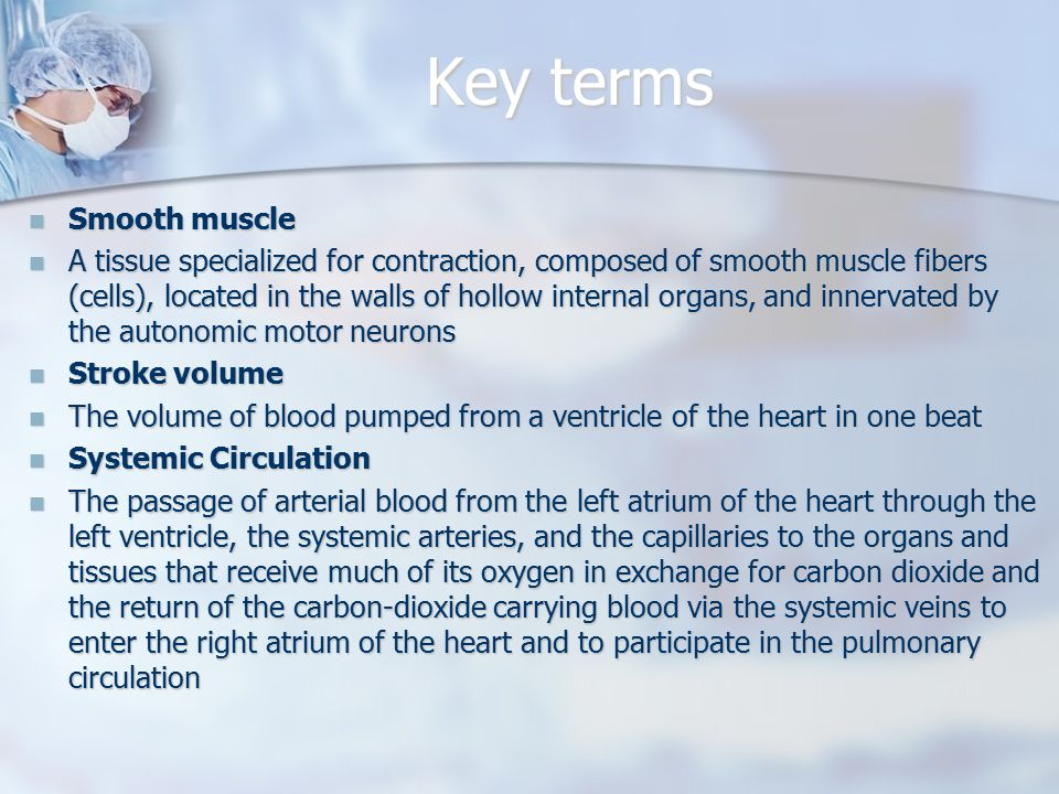 Key terms Smooth muscle