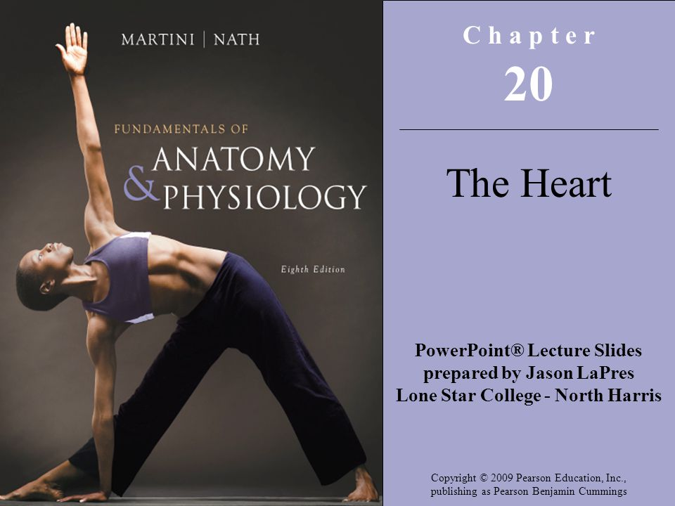 C h a p t e r 20. The Heart. PowerPoint® Lecture Slides prepared by Jason LaPres. Lone Star College - North Harris.