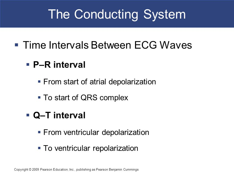 The Conducting System Time Intervals Between ECG Waves P–R interval