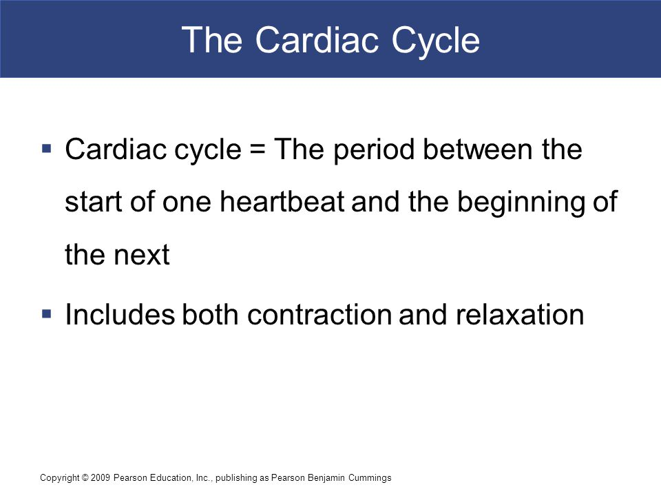 The Cardiac Cycle Cardiac cycle = The period between the start of one heartbeat and the beginning of the next.