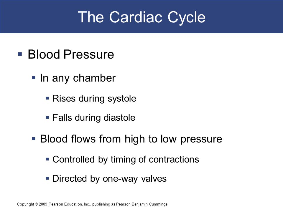 The Cardiac Cycle Blood Pressure In any chamber