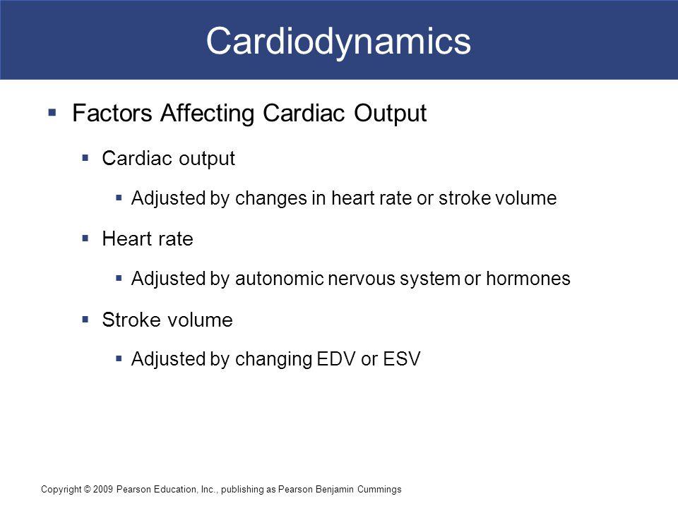 Cardiodynamics Factors Affecting Cardiac Output Cardiac output