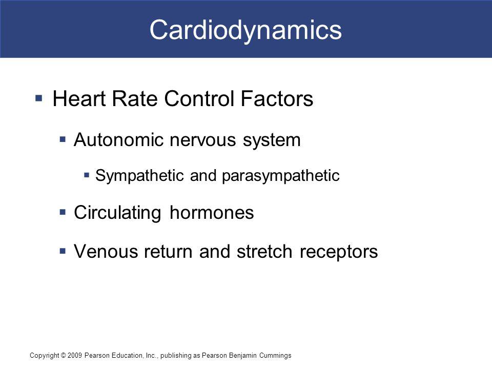 Cardiodynamics Heart Rate Control Factors Autonomic nervous system