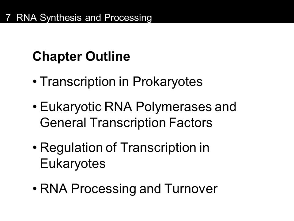 7 RNA Synthesis and Processing