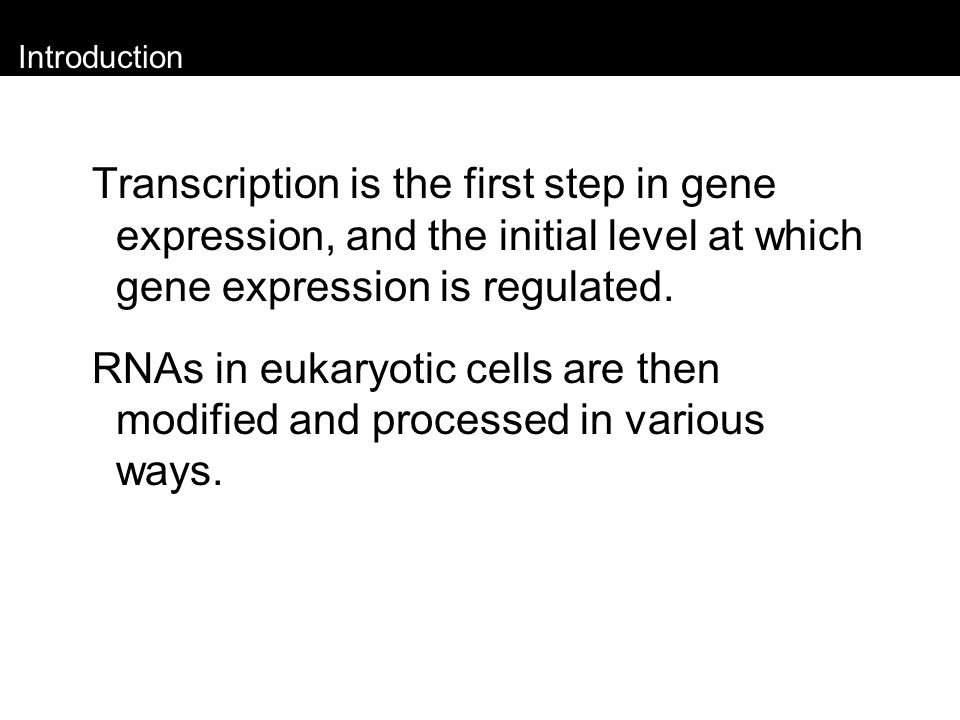 Introduction Transcription is the first step in gene expression, and the initial level at which gene expression is regulated.