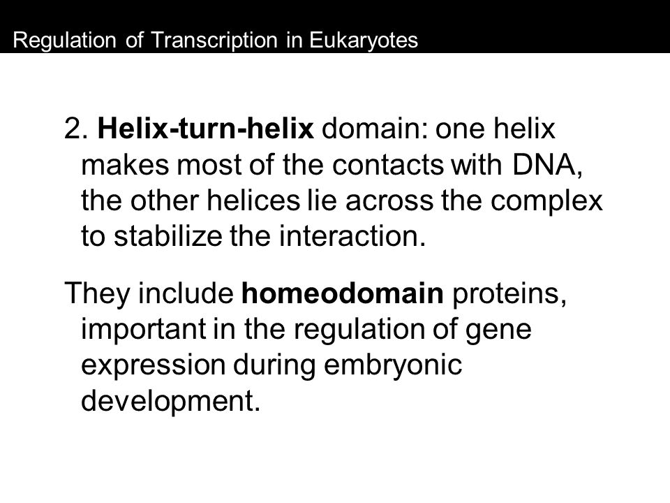 Regulation of Transcription in Eukaryotes