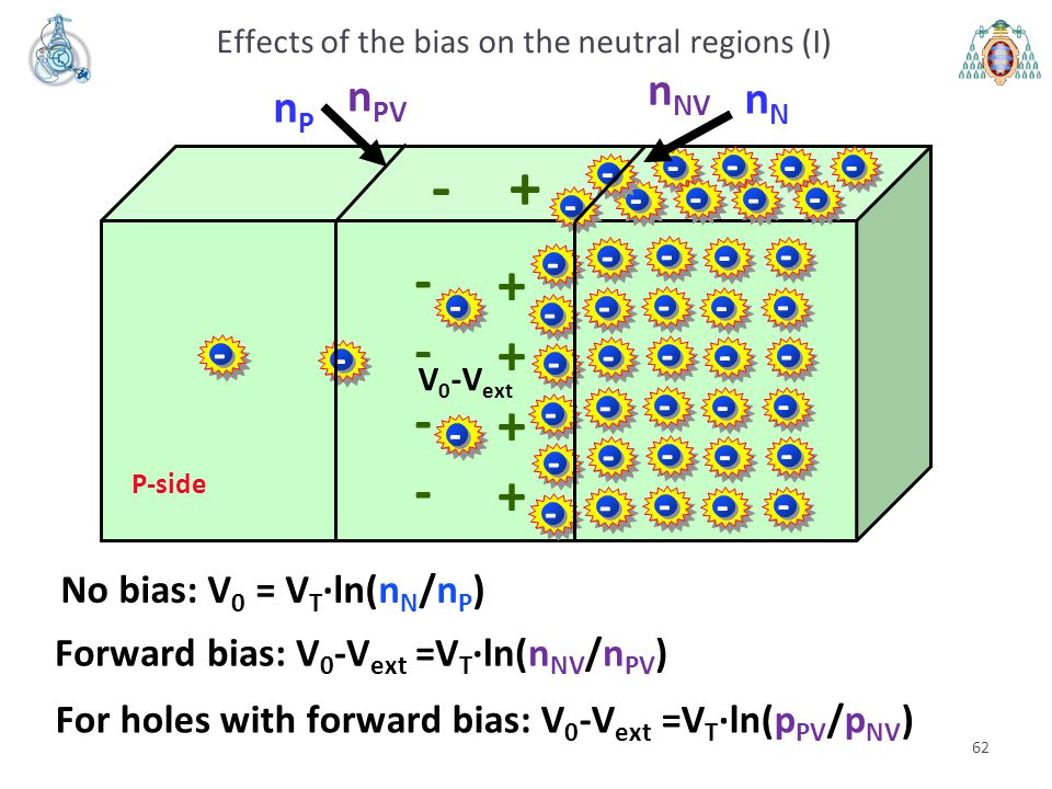 Effects of the bias on the neutral regions (I)