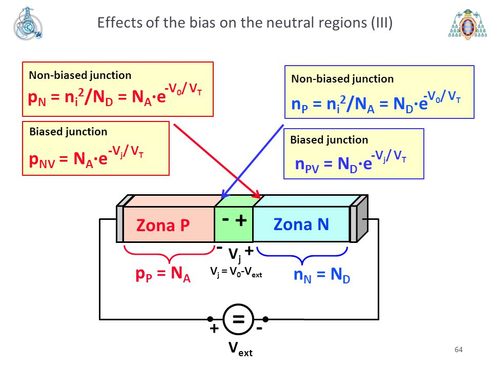 Effects of the bias on the neutral regions (III)