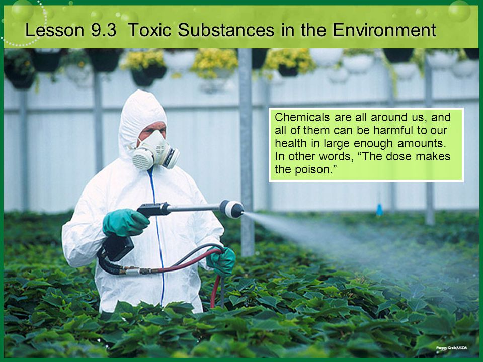 Lesson 9.3 Toxic Substances in the Environment