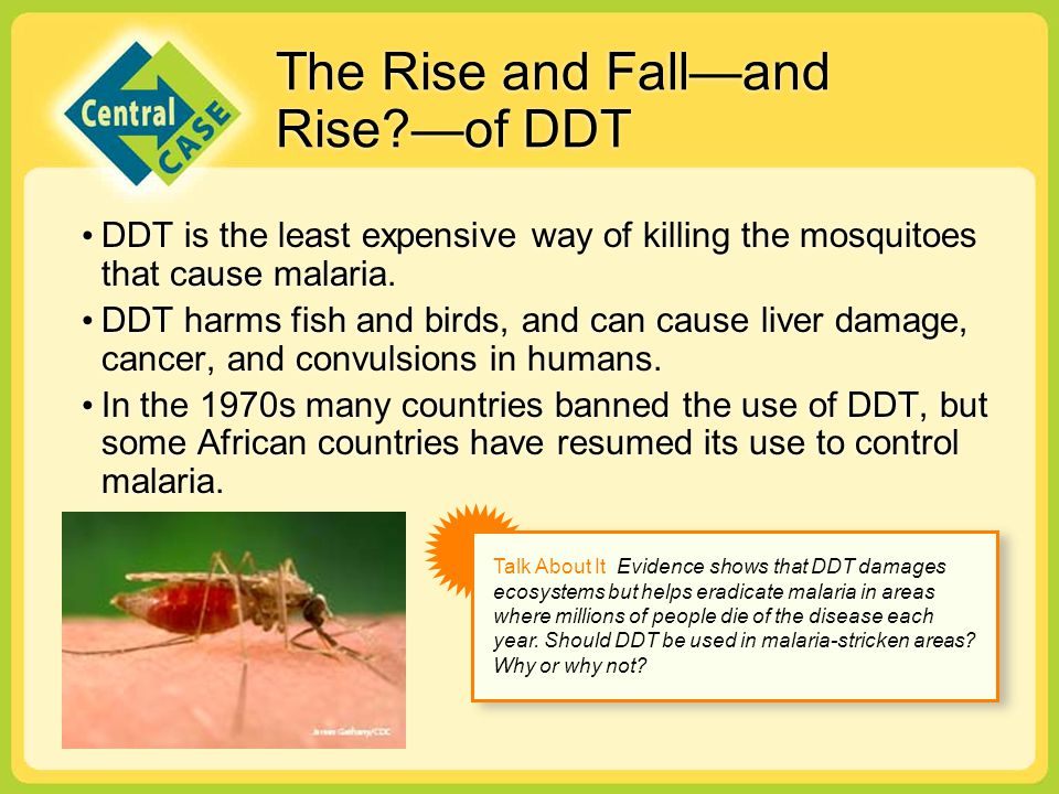 The Rise and Fall—and Rise —of DDT
