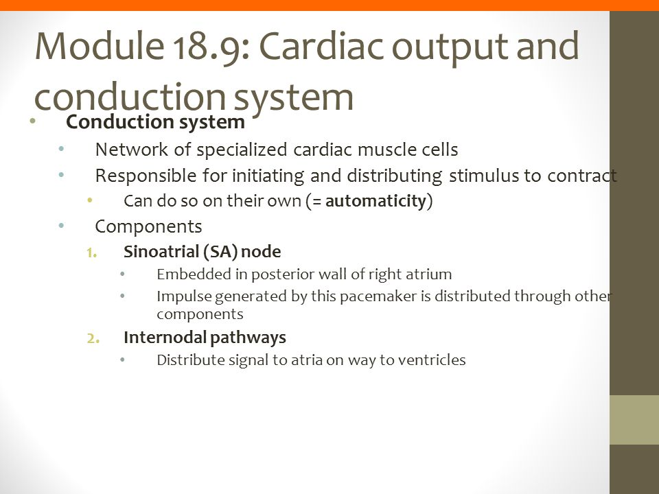 Module 18.9: Cardiac output and conduction system