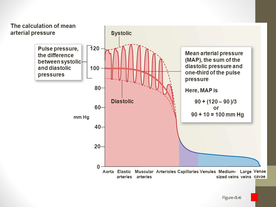 The calculation of mean arterial pressure