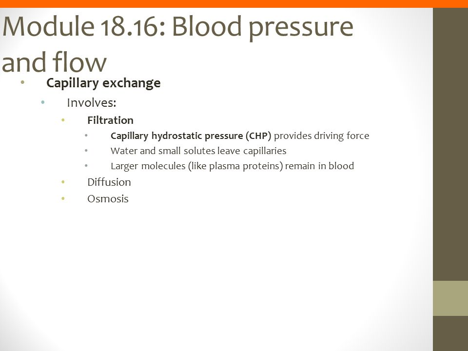 Module 18.16: Blood pressure and flow