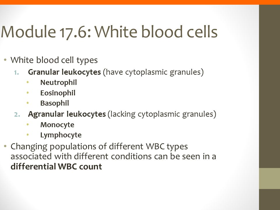 Module 17.6: White blood cells