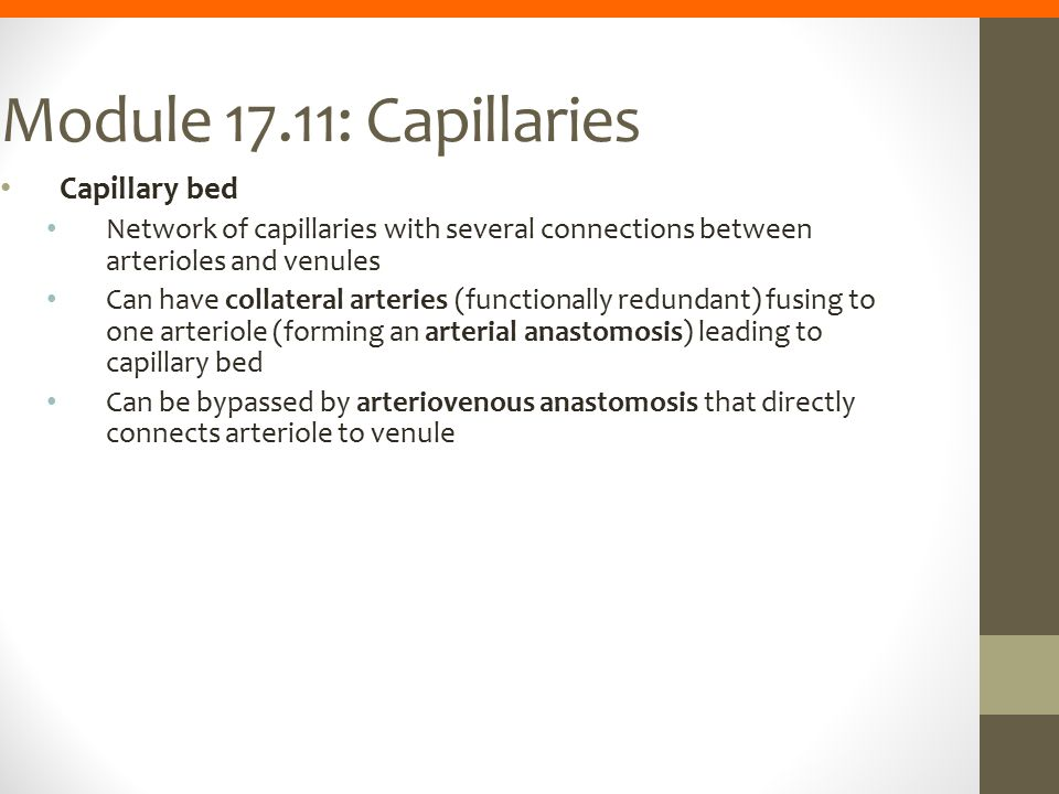 Module 17.11: Capillaries Capillary bed