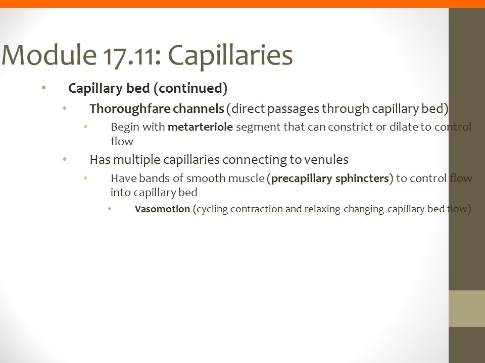 Module 17.11: Capillaries Capillary bed (continued)