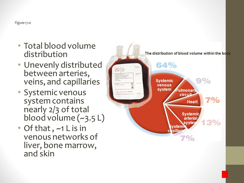 Total blood volume distribution