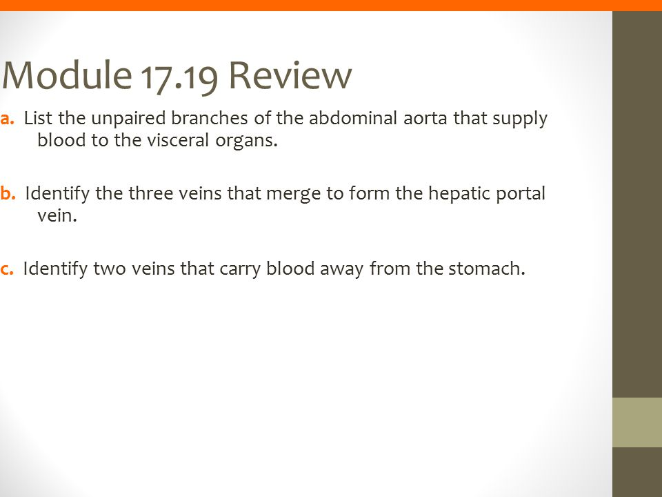 Module 17.19 Review a. List the unpaired branches of the abdominal aorta that supply blood to the visceral organs.