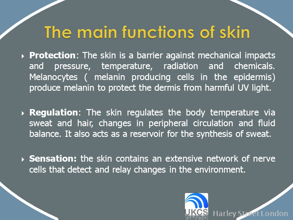 The main functions of skin