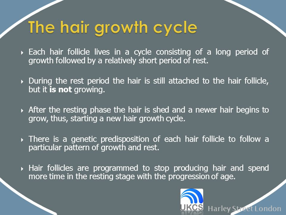 The hair growth cycle Each hair follicle lives in a cycle consisting of a long period of growth followed by a relatively short period of rest.