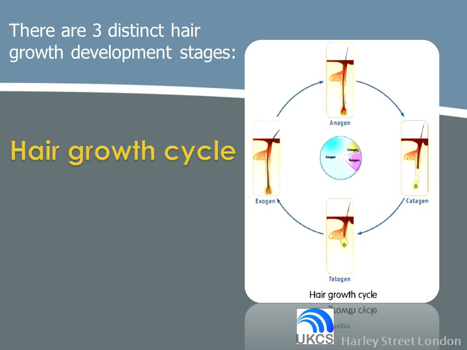Hair growth cycle There are 3 distinct hair growth development stages: