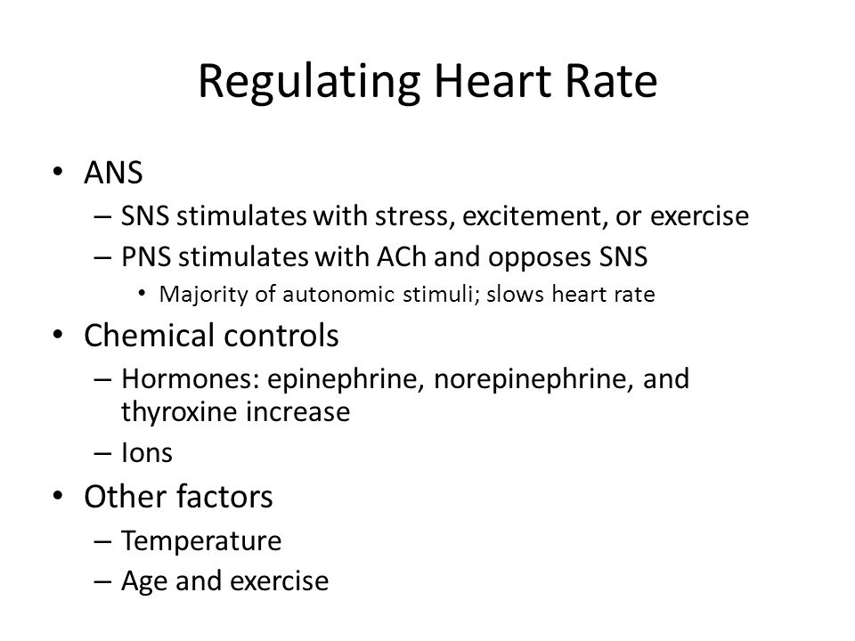 Regulating Heart Rate ANS Chemical controls Other factors