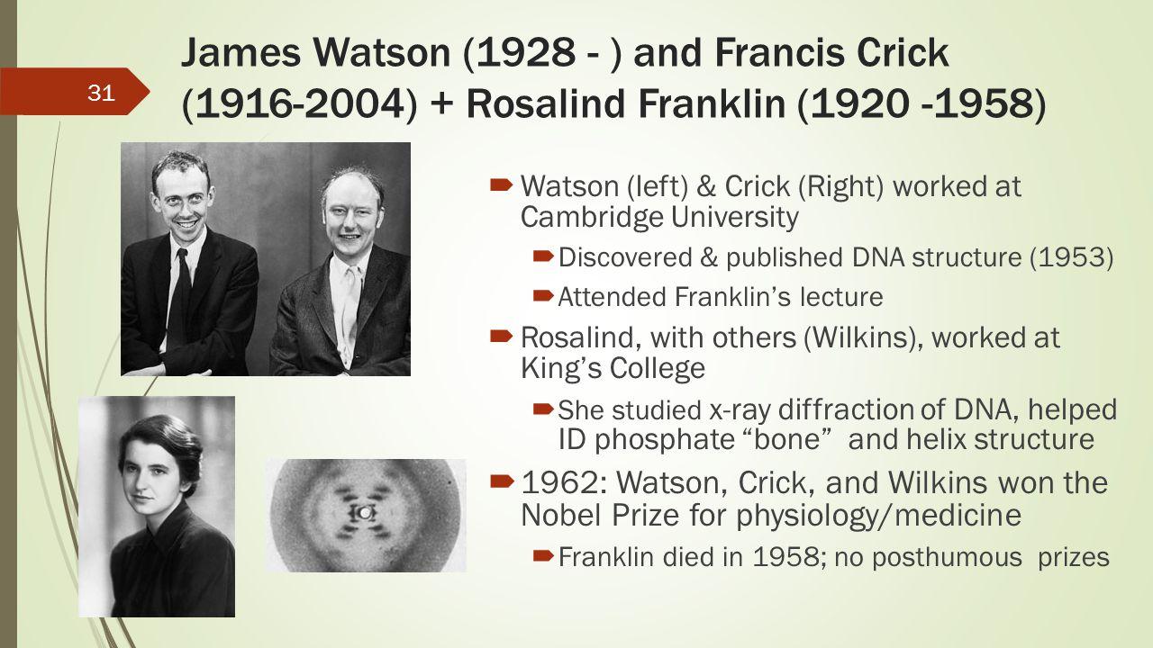James Watson (1928 - ) and Francis Crick (1916-2004) + Rosalind Franklin (1920 -1958)
