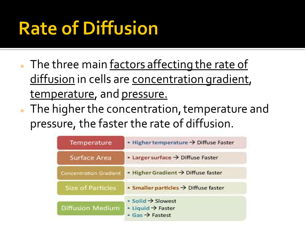 Rate of Diffusion The three main factors affecting the rate of diffusion in cells are concentration gradient, temperature, and pressure.