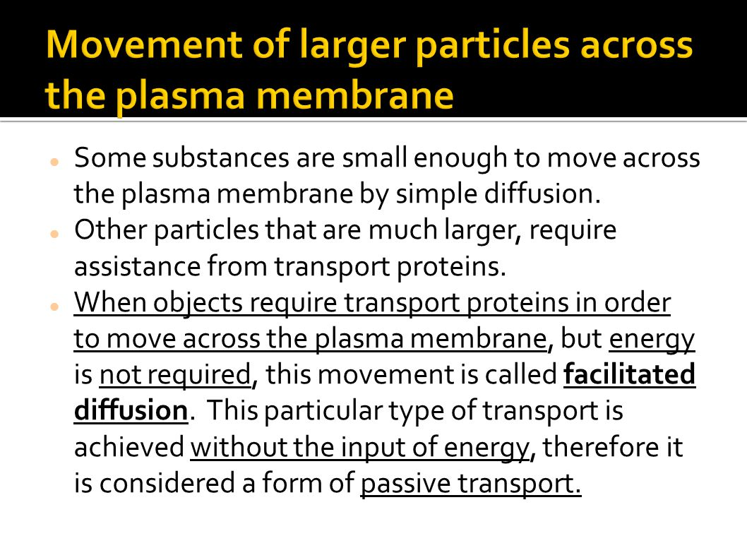 Movement of larger particles across the plasma membrane