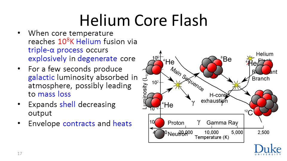 Helium Core Flash When core temperature reaches 108K Helium fusion via triple-α process occurs explosively in degenerate core.