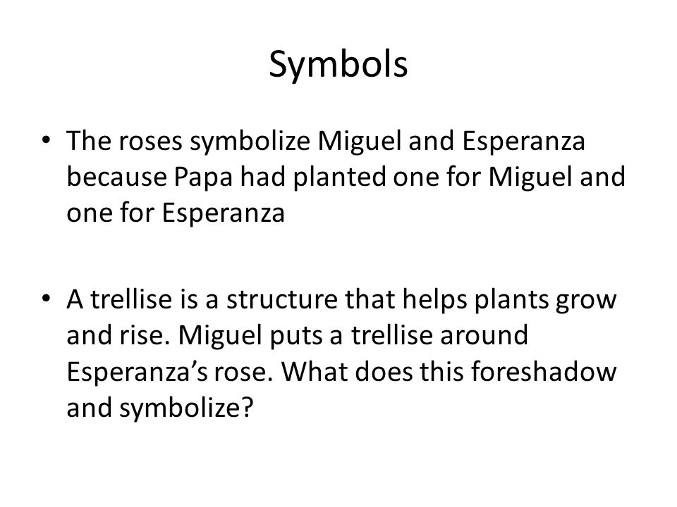 Symbols The roses symbolize Miguel and Esperanza because Papa had planted one for Miguel and one for Esperanza.
